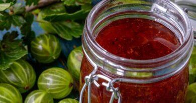 Варенье из крыжовника на зиму — Простые и вкусные рецепты Царского варенья